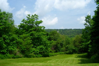 Land Under 3 Acres property gallery.